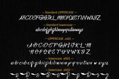 Homerun FamilyTypeface Product Image 6