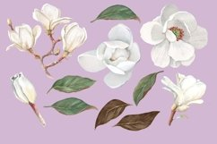 Magnolia Flower, Watercolor Floral clipart Product Image 3
