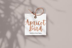 Apricots - Handwritten Script Font Product Image 3