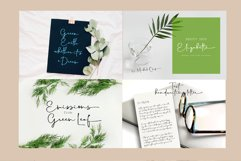 Special Bundle Calligraphy Product Image 13
