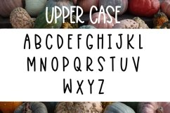 Squashy Noodles - A Fun Font Duo Product Image 2