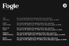 Fogie Modern Serif Font Product Image 2