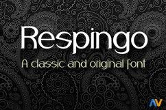 Respingo Product Image 1