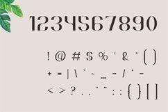 Brescia   Modern Serif Product Image 2
