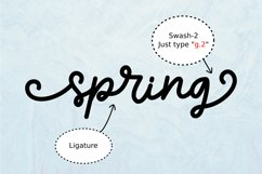 Sprinky - Multilingual Swash Script Product Image 5