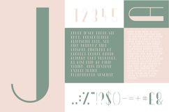 Ornate Typeface Product Image 2