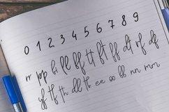 Web Font Vested Product Image 3