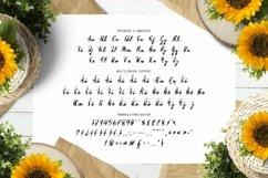 Web Font Flower Path Font Product Image 5