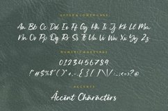 Silent Landfield is a Modern Calligraphy Font Product Image 6