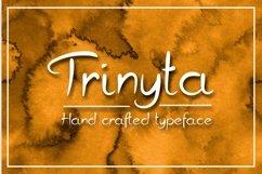 Trinyta Product Image 1