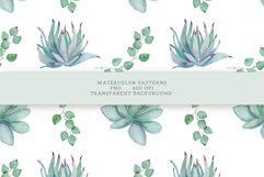 Succulents Seamless Patterns Product Image 13