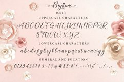 Bryttani Font Trio Product Image 9