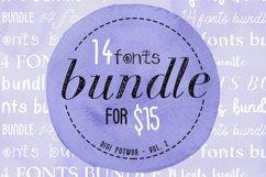 14 Fonts bundle vol.2 Product Image 1