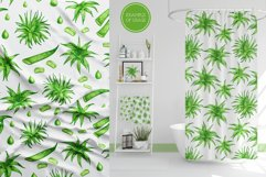Aloe Vera Clipart. Watercolor Succulent PNG Collection Product Image 6