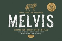 Melvis - Vintage Font Family Extras Product Image 1