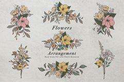 WILD FLOWERS Illustration Botanical Product Image 11