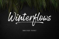 Winterflows Brush Product Image 1