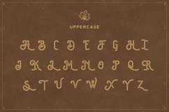 The Brewski - Textured Typeface Product Image 5