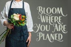 Beauty Florist Font Product Image 4