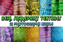 Abstract Snakeprint backgrounds Small by Squeeb Creative