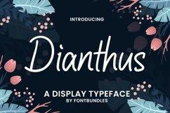 Web Font Dianthus Product Image 1