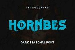 Web Font Hornbes Font Product Image 1