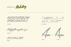 Melastory Script Product Image 2