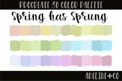 Spring has Sprung Procreate color palette Product Image 1