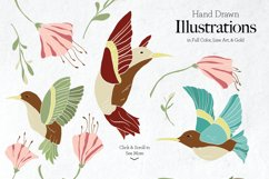 Fancy Hummingbird Collection Product Image 3
