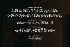 Web Font Biertey - A Script Brush Font Product Image 5