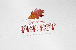 Wooby Script Typeface Product Image 4