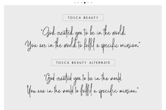 Tosca Beauty Handwritten Font Product Image 2