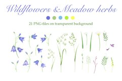 Poppies and Wildflowers Product Image 3
