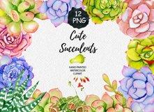 Succulents watercolor clipart Product Image 1