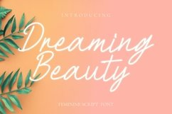 Web Font Dreaming Beauty Font Product Image 1