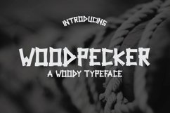 Web Font Woodpecker Typeface Product Image 1