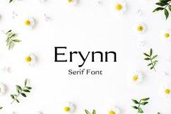 Erynn Serif Font Product Image 1