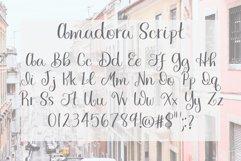 Amadora Script Product Image 4