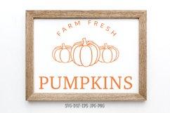 Fall sign bundle, pumpkin SVG, Fall Circle SVG, fall svg Product Image 2
