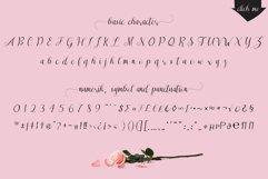Sareeka Script Product Image 2