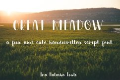 Great Meadow Product Image 1