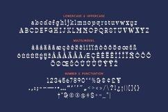 Raishin - Slab Serif Display Typeface Product Image 5