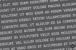 BARN ACRE Farmhouse Serif Font Product Image 2