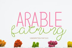 Arable Farming Font Duo Product Image 1