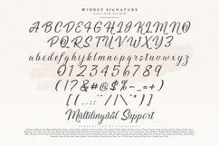 Windey Signature Product Image 9