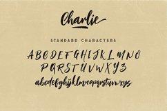 Charlie Script Font Product Image 6