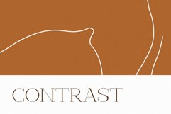 Verona - Elegant Display Serif Product Image 5