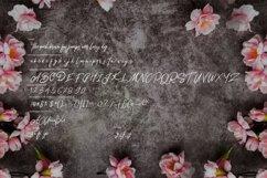 Bentley | Modern Script Font Product Image 6