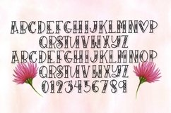 Web Font Sugarbug - A Hand Lettered Heart Font Product Image 3