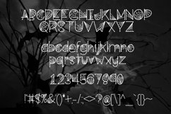 Cobwebs a Spooktacular Font Product Image 2